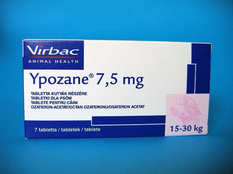 Prosztata | BENU Gyógyszerkereső és online gyógyszertár